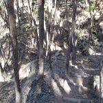 Stairs into small gully (102550)