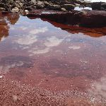Pool in red sands bay (102988)
