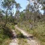 Service trail between red sands bay and Leather Jacket Bay (103300)