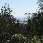 View from Bournda Trig (103477)