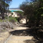 Stairs off the north end of Wallagoot Beach (104725)