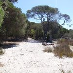 Track away from Hobart Beach to camping area (105073)
