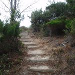 Stairs to the Pinnacles (107818)