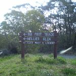 Sign near the start of the Six foot track (10907)