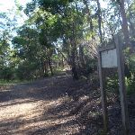 Following the Darri Track signs (115954)
