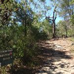 Intersection of the Warrimoo Track (116314)