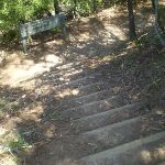 Top of steps at cliff drive (11915)