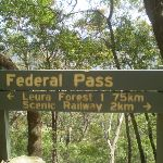 Federal Pass sign (12008)