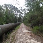 Following the Pipeline Track (121993)