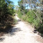 Cook St service trail (126907)