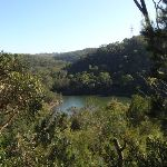 View of Middle Harbour Creek on Two Creeks track (130270)