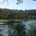 Across middle harbour to Davison Reserve (130516)