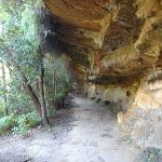 Cave on Two Creeks Track Little Diggers park (130564)