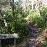 Sign to Little falls on Little Digger track (134149)
