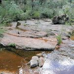Small water hole on Lincoln Creek (144084)
