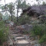 Steps and rocks on Jellybean pool track (144915)