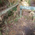 Signs across small stream (145584)