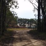 Trail to helicopter pad (145902)