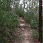 Track up to Lawsons Lookout (146370)