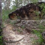 Rock beside track to Lawsons Lookout (146418)