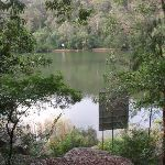 Nepean River (146739)