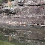 Mirror image in water next to Martins camping area (147378)