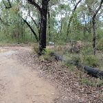 Nepean Lookout fire trail (150357)