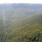 Grose Valley from Govetts Leap Lookout (15076)