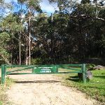 Gate at the end of Blackwattle Place (152782)