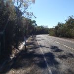West Head Rd near the Salvation Loop track (156307)