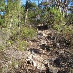 Climbing to the Willunga trig point (156460)