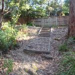 Some steps leading down from the Blackwattle trail (156886)