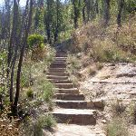 Cliff Top Track stairs (15691)