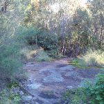 Small rock outcrops on the track (157429)