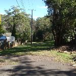 Looking down Redgum Ave (158068)