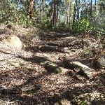 Nice rocky section of the track (158245)