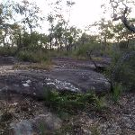 Rock outcrop by the track (160390)