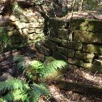 Remnants of an old bridge in Shepherds Gully (162979)