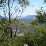 Looking down at the Lady Darley Lookout (16942)
