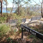Views from Ouraka Point (201961)