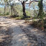 Old management trail (202603)