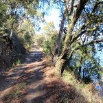 Heading up the Pacific Trail (204349)
