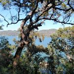 Water view from Pacific Trail (204424)