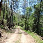 Old Ten Mile Hollow Rd (223502)