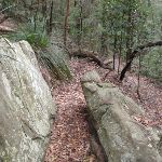 Walking through the cleft in the rock (225550)