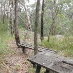 Old Picnic Table and bench (228559)