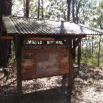 Information sign near Colin Watters Lookout (234404)