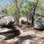 The boulders can be quite interesting on there own (235523)