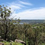 View from By-pass on Sid Pulsford Walking trail (236729)