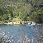 Views over to Bantry Bay Picnic Area (24576)